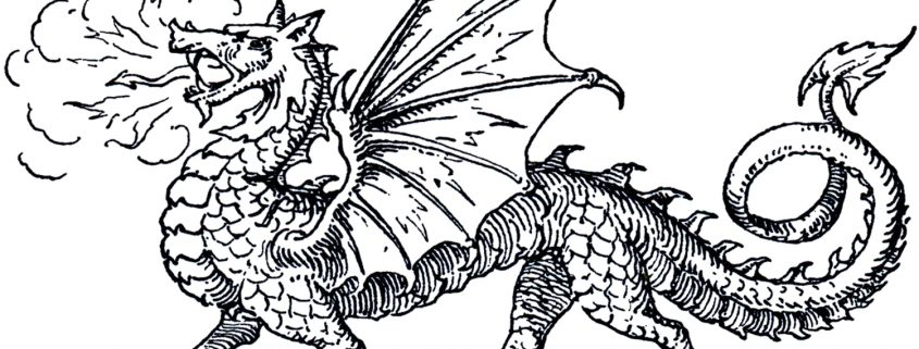 Remove private mortgage insurance dragon photo